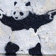 The Crooked Panda