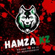 HamzaKz786