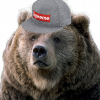 Bear_Says_Roar