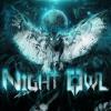 NightOwl916-