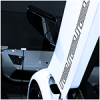 Dinka Enduro revealed? - last post by KifflomBroBro