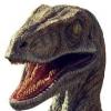 Raptorskwee